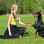 Max Polyakov's Training Secrets for Preparing a Doggie for Completions