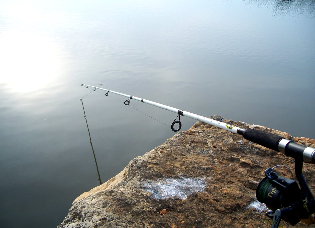 Best Fishing Pole for Beginners Reviews