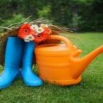 Best Watering Can for Vegetable Garden