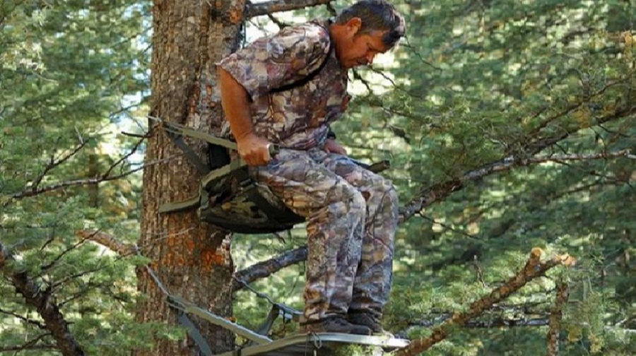 How Do You Secure a Climbing Tree Stand